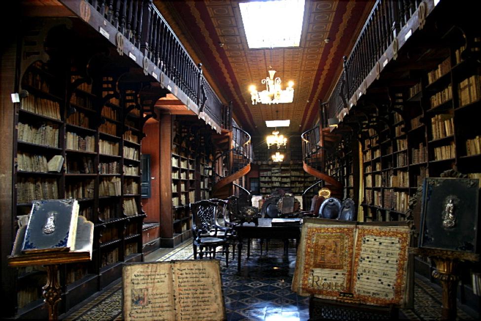 biblioteka 10