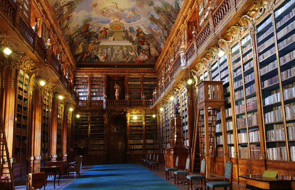 biblioteka 13