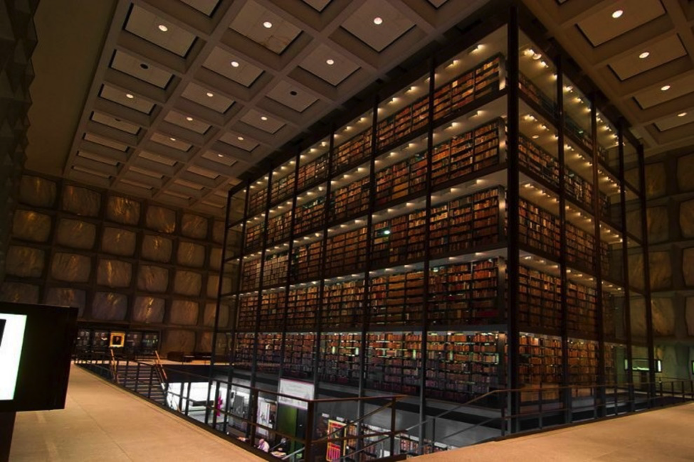 biblioteka 17
