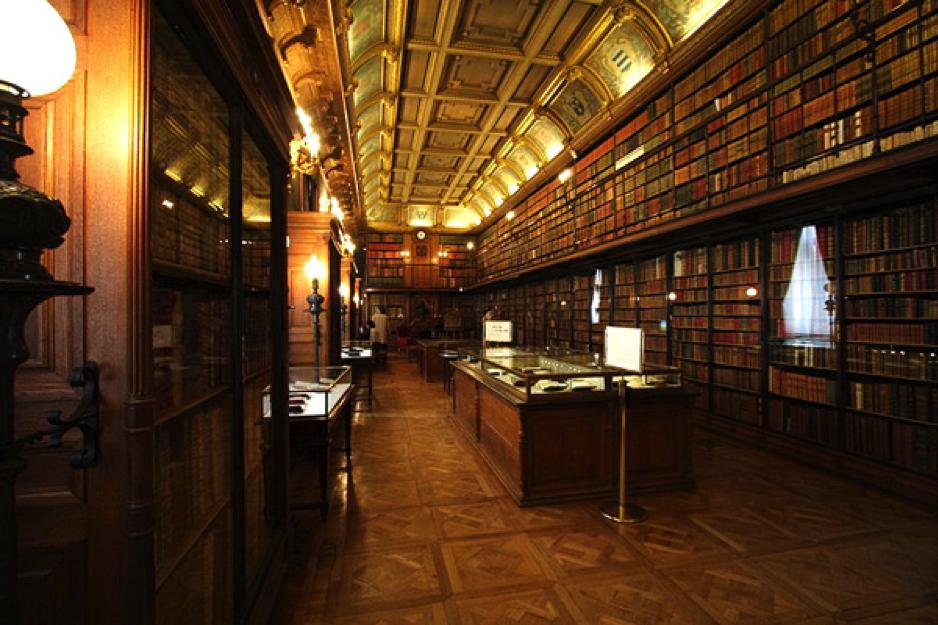 biblioteka 19