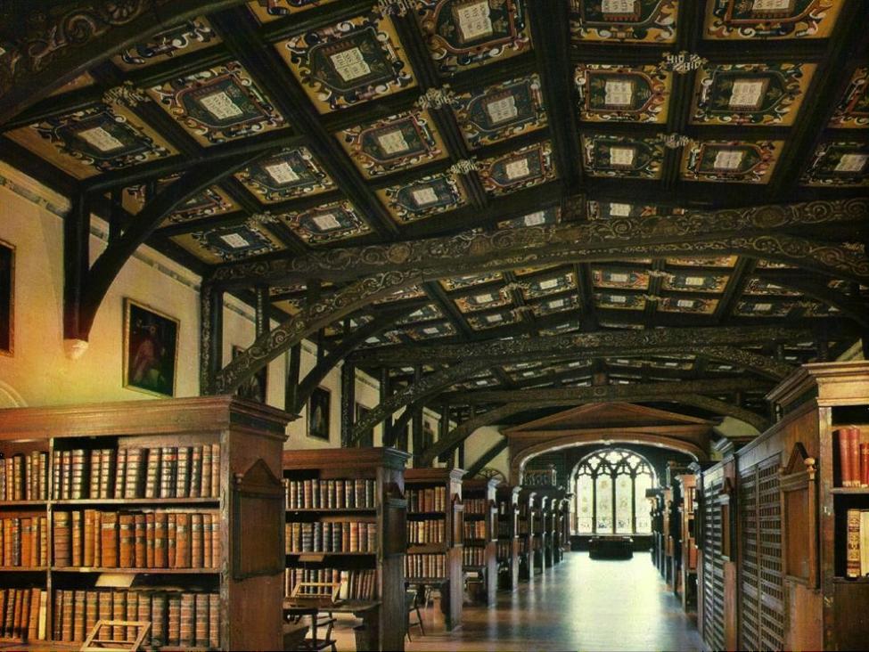 biblioteka 23