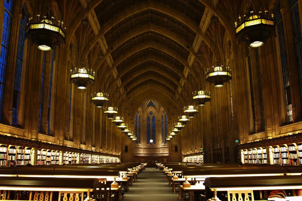 biblioteka 6