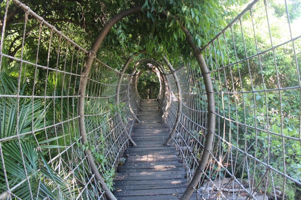Paukov most, Južnoafrička Republika