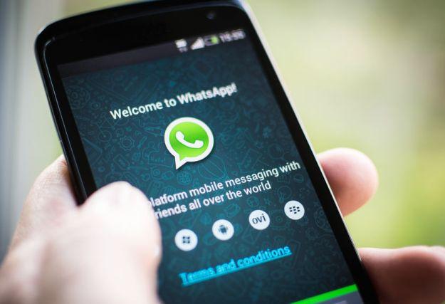 whatsappmob